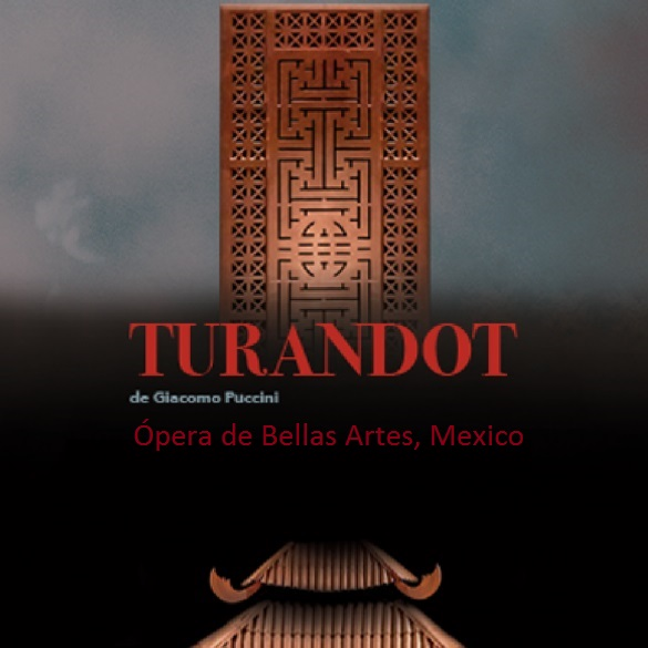 thumb turtandot_may_mexico_2017_2x2